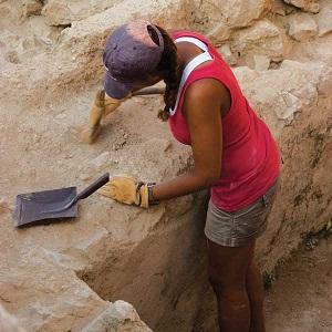 Role of soils soils 4 teachers for Soil 4 teachers