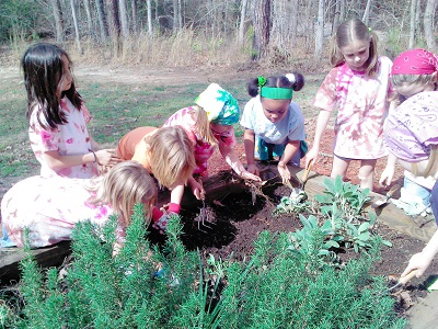 Soil and food production soils 4 teachers for Soil 4 teachers