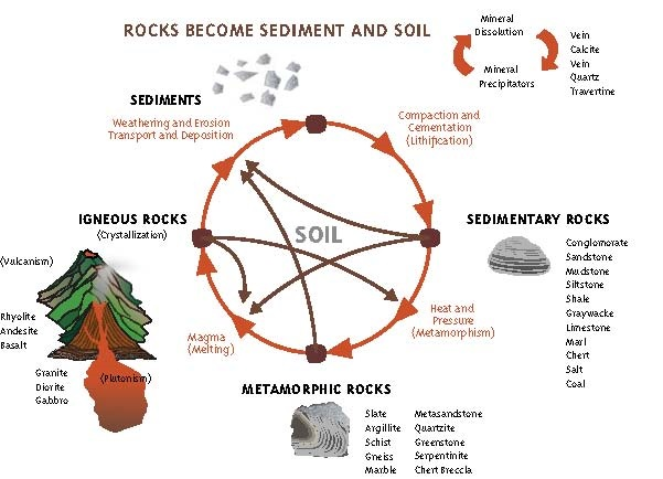 Soil weathering processes soils 4 teachers for Soil life cycle