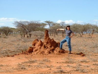 Termites can radically change a landscape.
