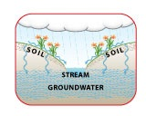 Soils Role in the Water Cycle