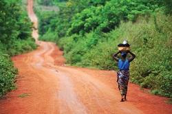 Tropical Soils | Soils 4 Teachers